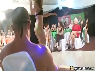 Crazy party girls are sucking cock and having a